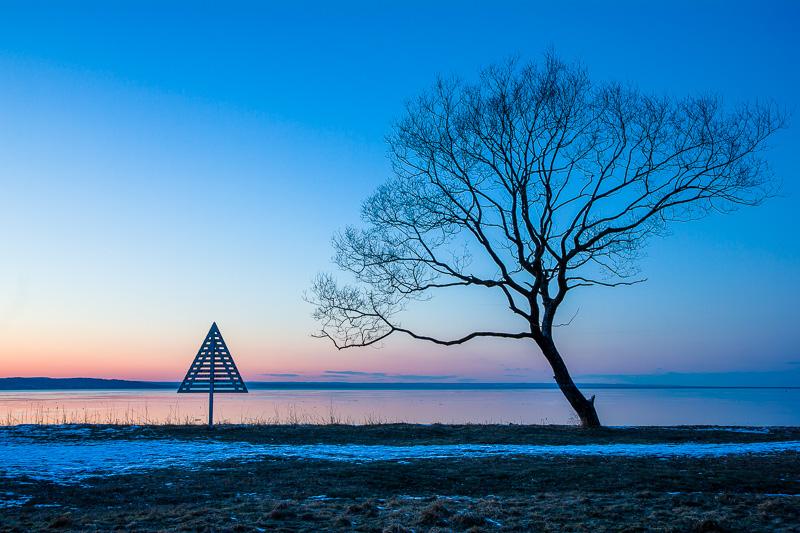 Triangel och träd