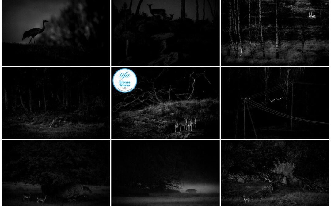 Niklas Storm gets two bronze medals in Tokyo International Foto Awards 2020